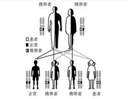 性连锁遗传病