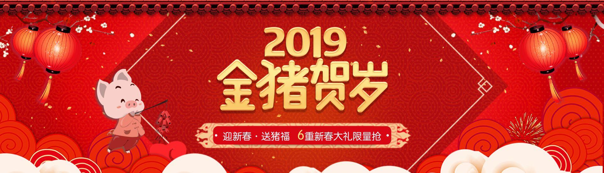 2019金猪贺岁